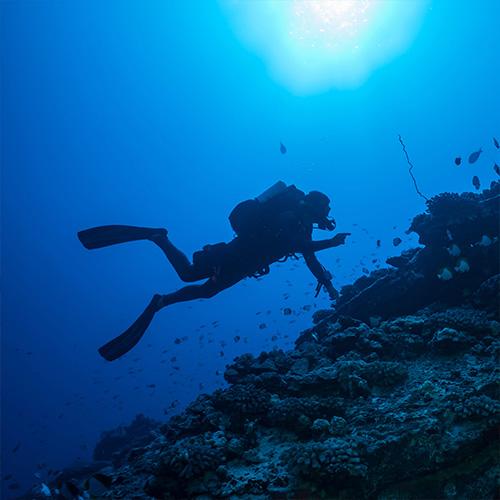 plongee à Cargèse